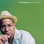 David Pilgrim Under The Bushel