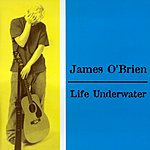 James O'Brien Life Underwater