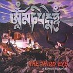 The Third Eye A Tibetan Initiation