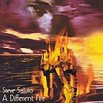Steve Saluto A Different Fire