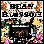 Bill Monroe Bean Blossom (Live)