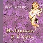 Cynthia Sternau Meditations & Elegies