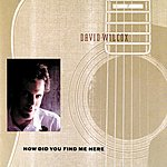 David Wilcox How Did You Find Me Here