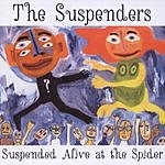 The Suspenders Suspended Alive At The Spider