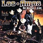 Los Amos De Nuevo León Pantano De Cocodrilos