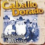 Caballo Dorado Escribiendo Lan Historia