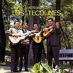 Los Tecolines Serenata Con Los Tecolines