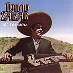 David Zaizar Mi Terruno