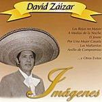 David Zaizar Imagenes