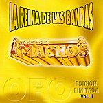 Banda Machos La Reina De Las Bandas, Vol.2