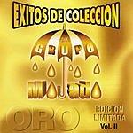 Grupo Mojado Exitos De Coleccion, Vol.2