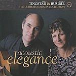 Eric Tingstad Acoustic Elegance