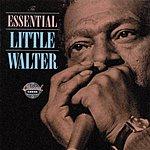 Little Walter The Essential Little Walter