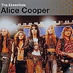 Alice Cooper The Essentials