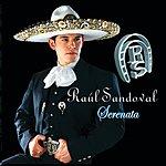 Raul Sandoval Serenata