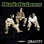 Bush Babees Gravity