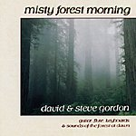 David & Steve Gordon Misty Forest Morning