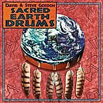 David & Steve Gordon Sacred Earth Drums