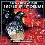 Steve Gordon Sacred Spirit Drums