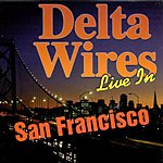 Delta Wires Live In San Francisco: Take Off Your Pajamas