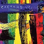 Caetano Veloso Livro