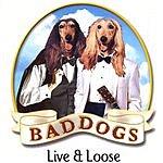 BadDogs Live & Loose