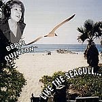 Beryl Quinton Like The Seagull