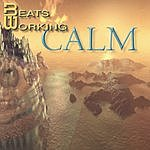Beats Working Calm