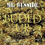 Mr. Wesside Buded Up