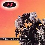 J4 A Dozen Dead Flowers