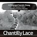Chantilly Lace A Geauga County Song
