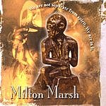 Milton Marsh We Are Not Seperate From Spirit, We Are In It