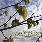 Declaration Divine Design
