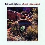 David Gans Solo Acoustic