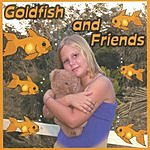 Harrison & Druitt Goldfish And Friends