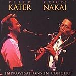 Peter Kater Improvisations In Concert