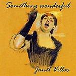Janet Villas Something Wonderful