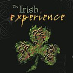 The Irish Experience The Irish Experience