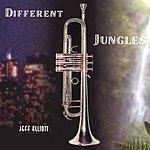 Jeff Elliott Different Jungles