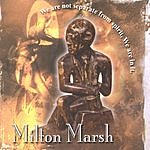 Milton Marsh We Are Not Separate From Spirit, We Are In It