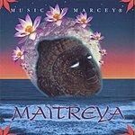 Marcey Maitreya
