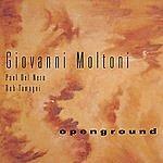 Giovanni Moltoni Openground