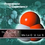 Programme D'Experience Thought Molecules