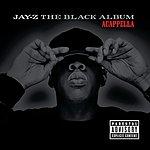 JAY Z The Black Album - A Cappella (Parental Advisory)
