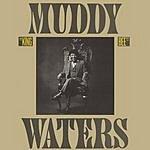 Muddy Waters King Bee