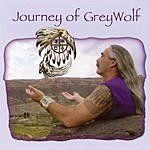 Grey Wolf The Journey Of Grey Wolf