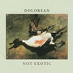 Dolorean Not Exotic
