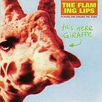 The Flaming Lips This Here Giraffe