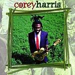 Corey Harris Greens From The Garden