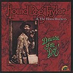 Hound Dog Taylor & The HouseRockers Beware Of The Dog!